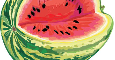 watermelon clipart transparent diary webstockreview multicolored