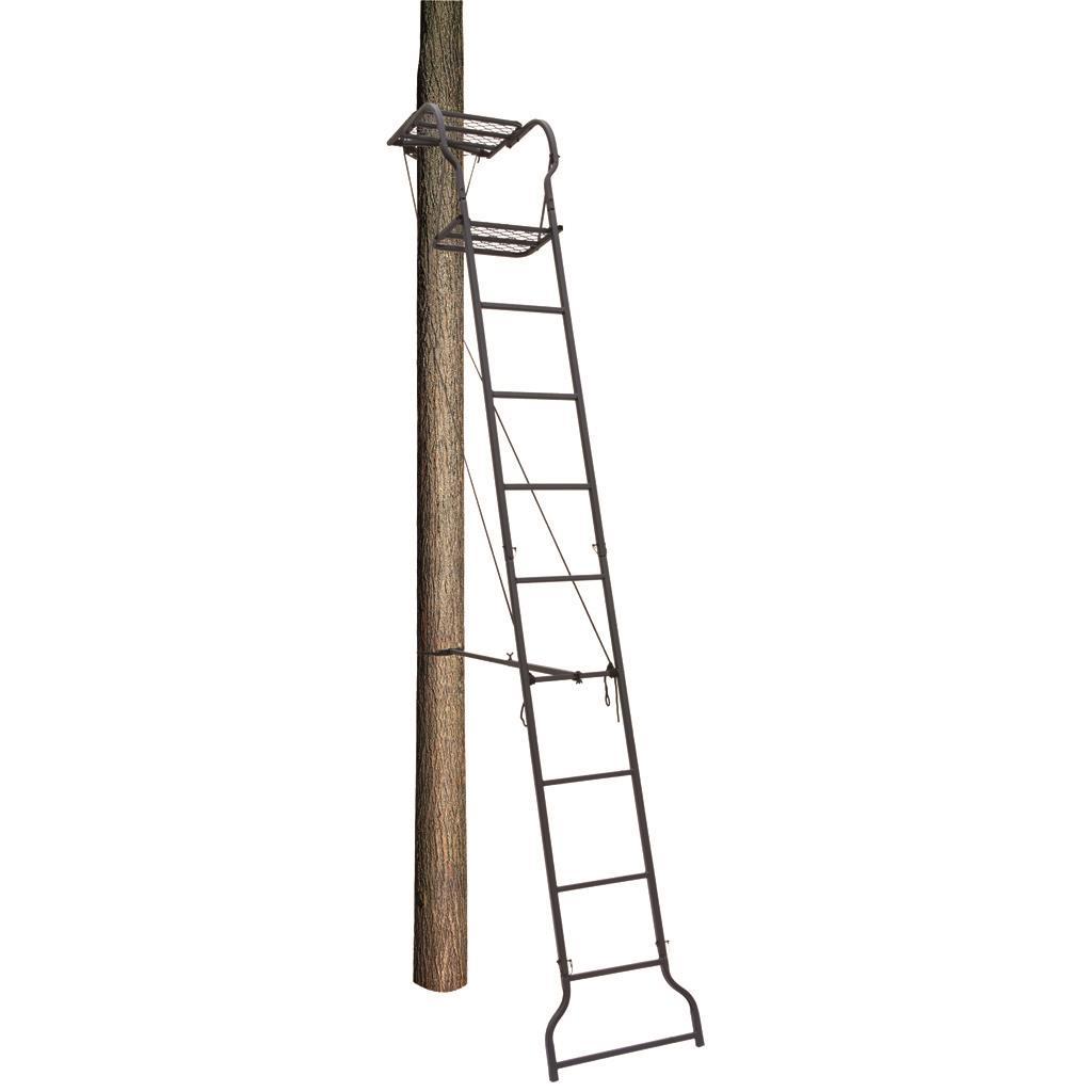 Big Dog Dash Hound Ladder Stand