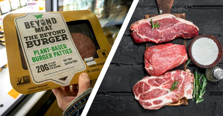 BENEFITS AND POTENTIAL IMPACT OF CONSUMING MOCK MEAT