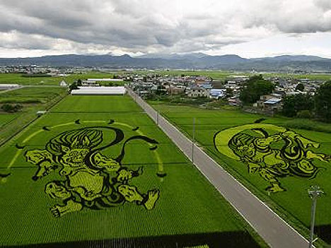 japanese-field-art-1