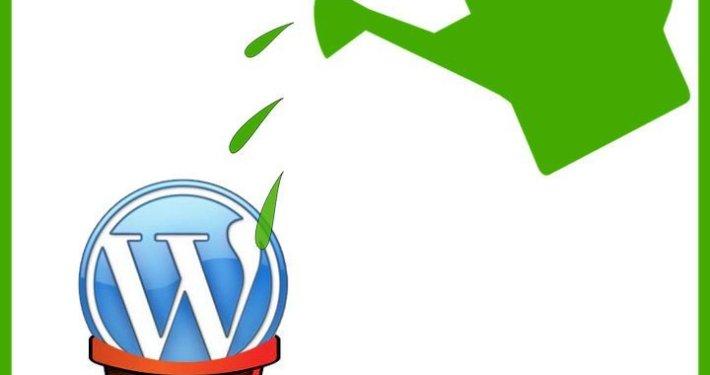 WordPress seems EASY