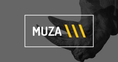 WordPress Vacation Rental by Owner Theme - Muza 6