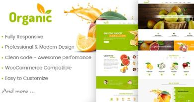AmyOrganic - Organic and Healthy Theme for WordPress 4