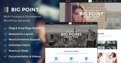 Big Point - Multi-Purpose & Ecommerce Theme 1