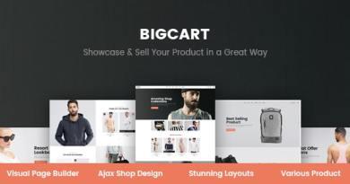 Bigcart - Clean, Modern WordPress Theme for WooCommerce 1