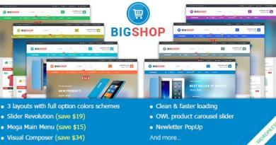 BigShop - Responsive Multi-Purpose Woocommerce WordPress Theme 4