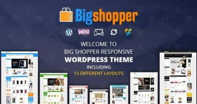 BigShopper - Multipurpose WooCommerce Theme 4