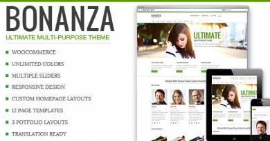 Bonanza - Responsive Multi-Purpose WordPress Theme 2