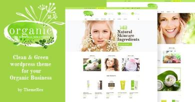 Organic Beauty Store & Natural Cosmetics WordPress Theme 4