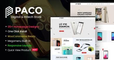 Paco - Responsive Woocommerce WordPress Digital Theme 3