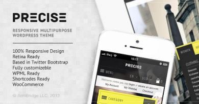 Precise — Multipurpose Responsive WordPress Theme 3