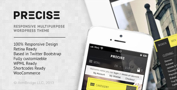 Precise — Multipurpose Responsive WordPress Theme 1