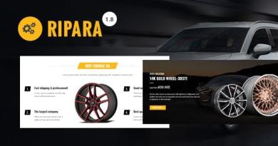 Ripara - Auto Repair & Car WooCommerce WordPress Theme 2