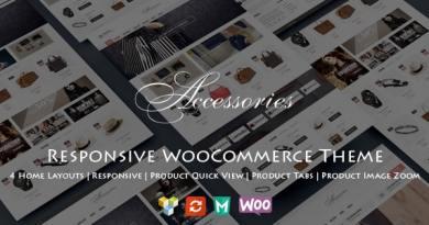 WooAccessories - Responsive WordPress Theme 4
