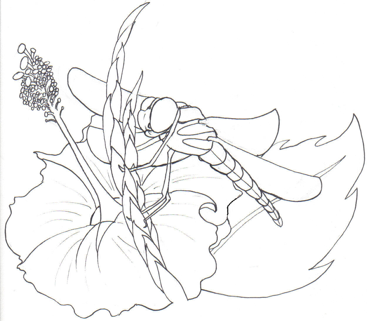 Free didgeridoo coloring pages
