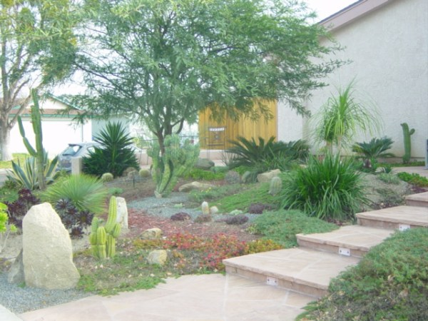 2 landscaping front yard
