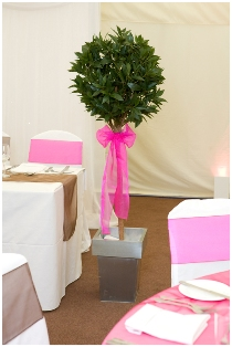 chair cover hire sheffield leather safari bay trees with wedding by pretty chairs in