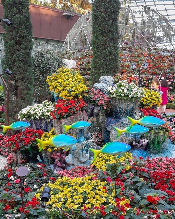 Flores de colores y peces decorativos en el Flower Dome, Singapur