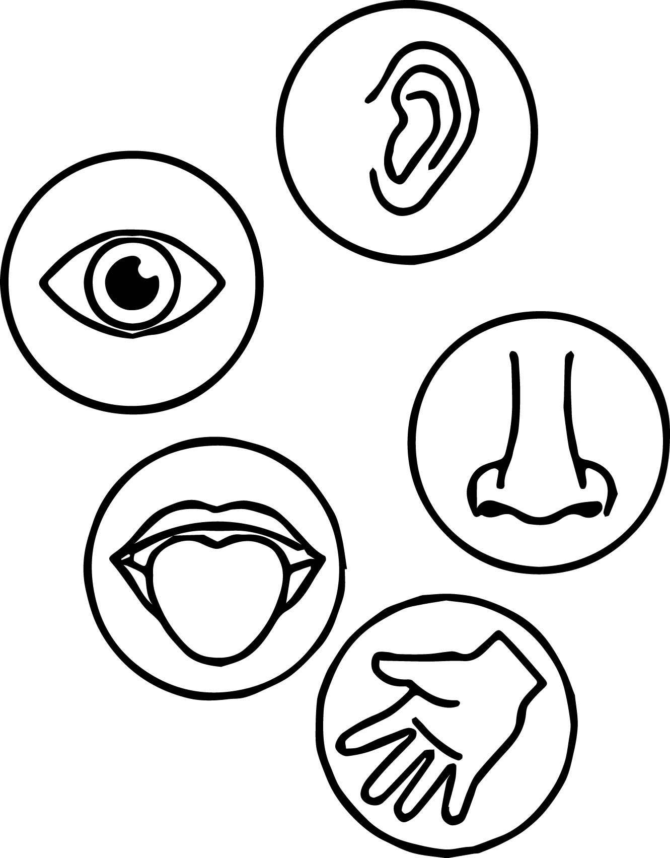 Senses Coloring Page
