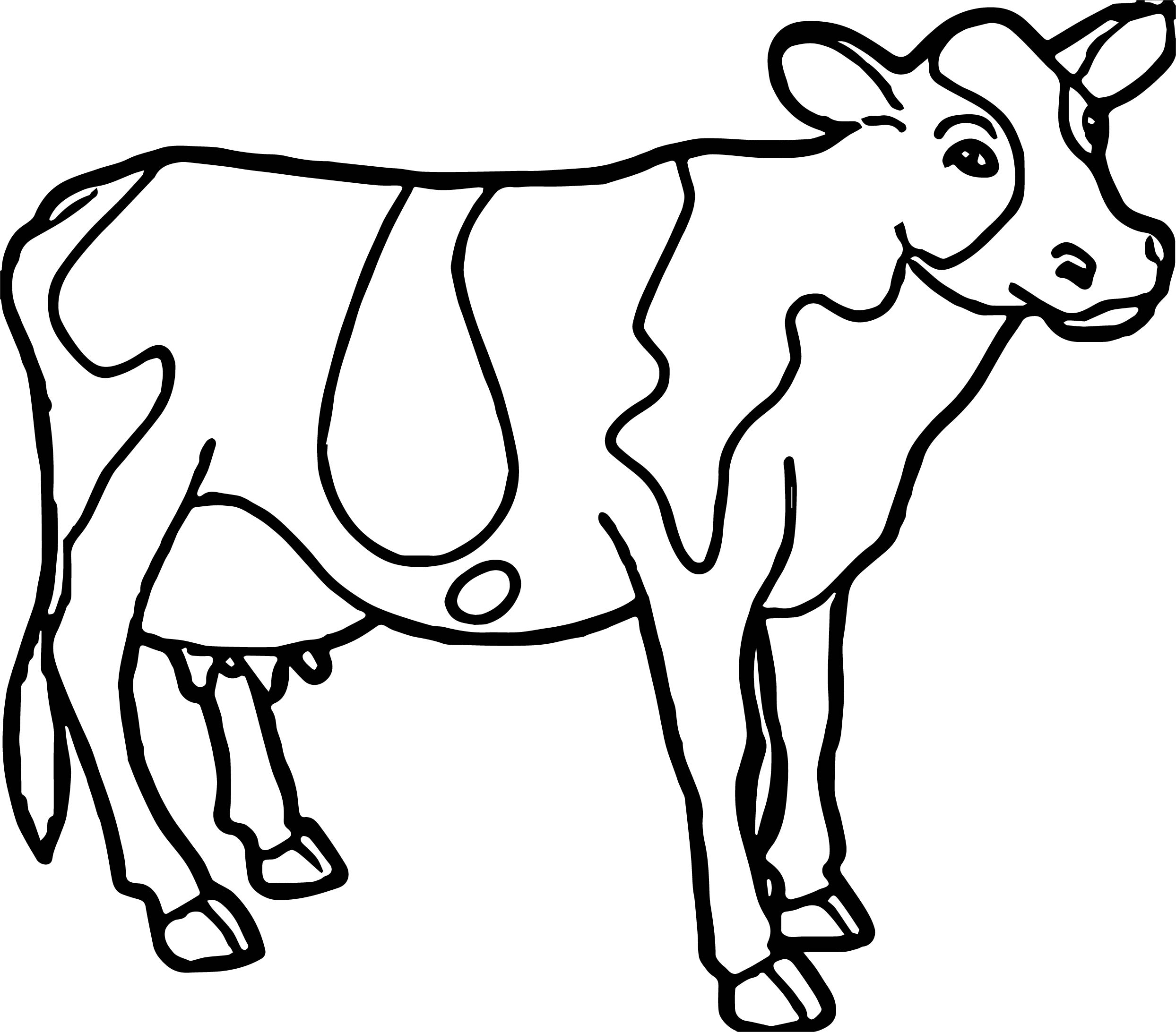 Free Cowboy Cow Coloring Pages