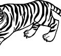 Tiger yell coloring page backgrounds animals tiger for and flowers mobile phones high quality