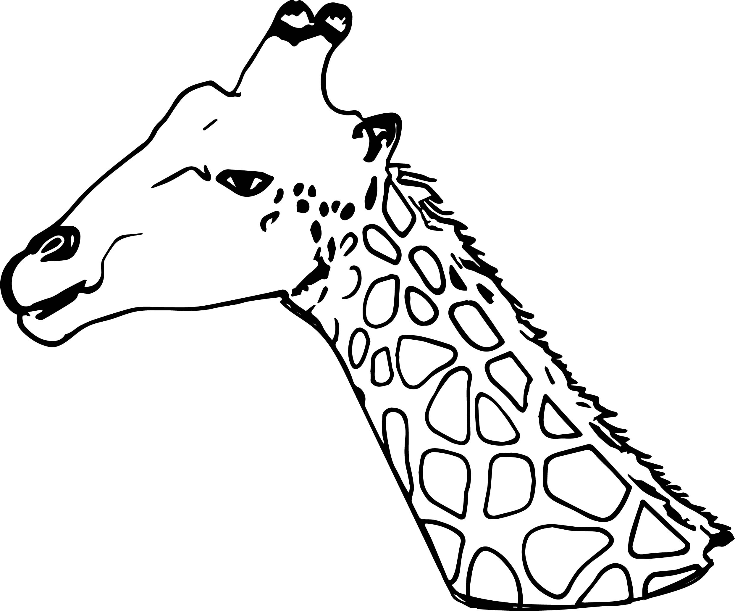 Giraffe Head Coloring Pages Pictures To Pin