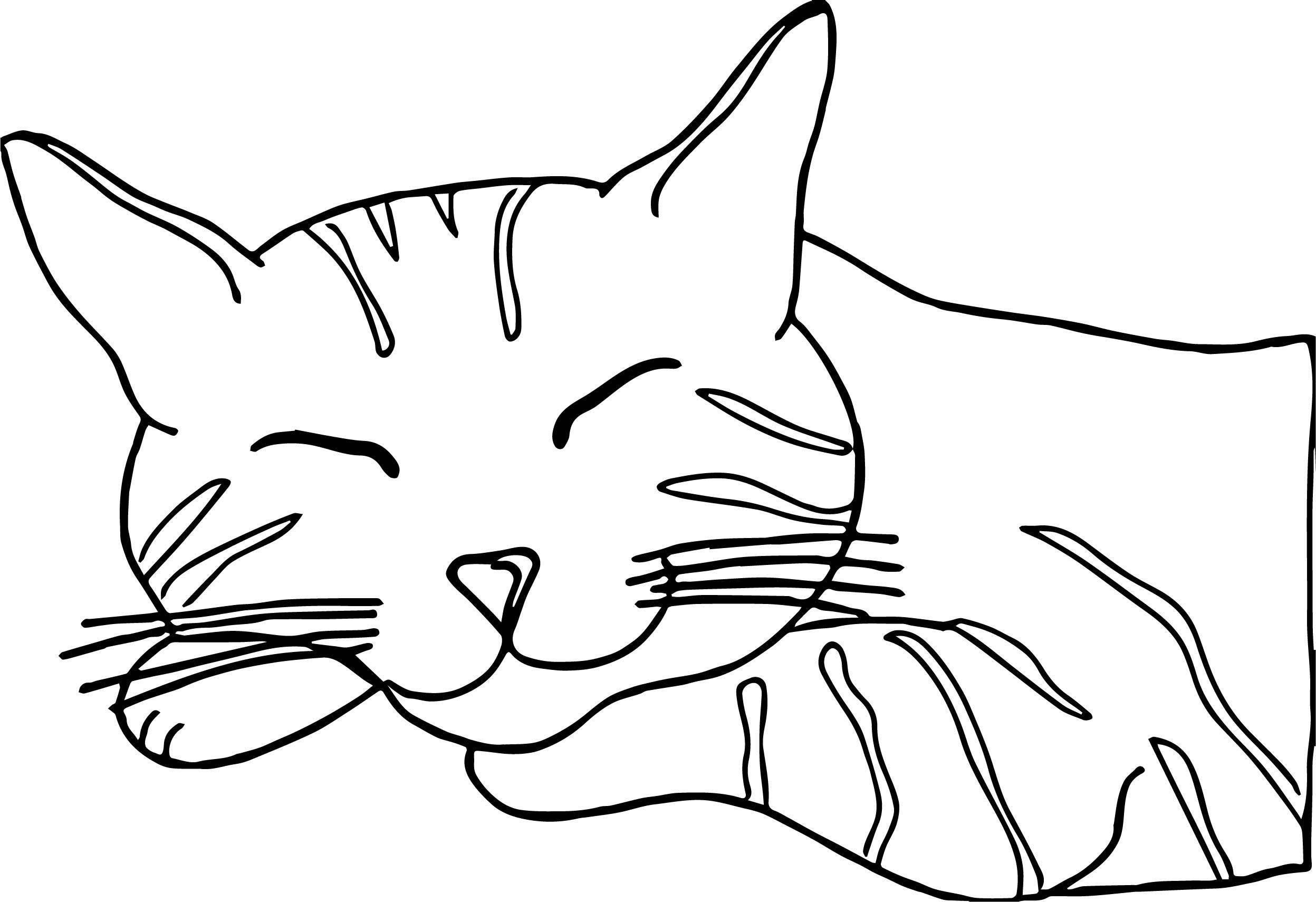 Do Cat Coloring Page