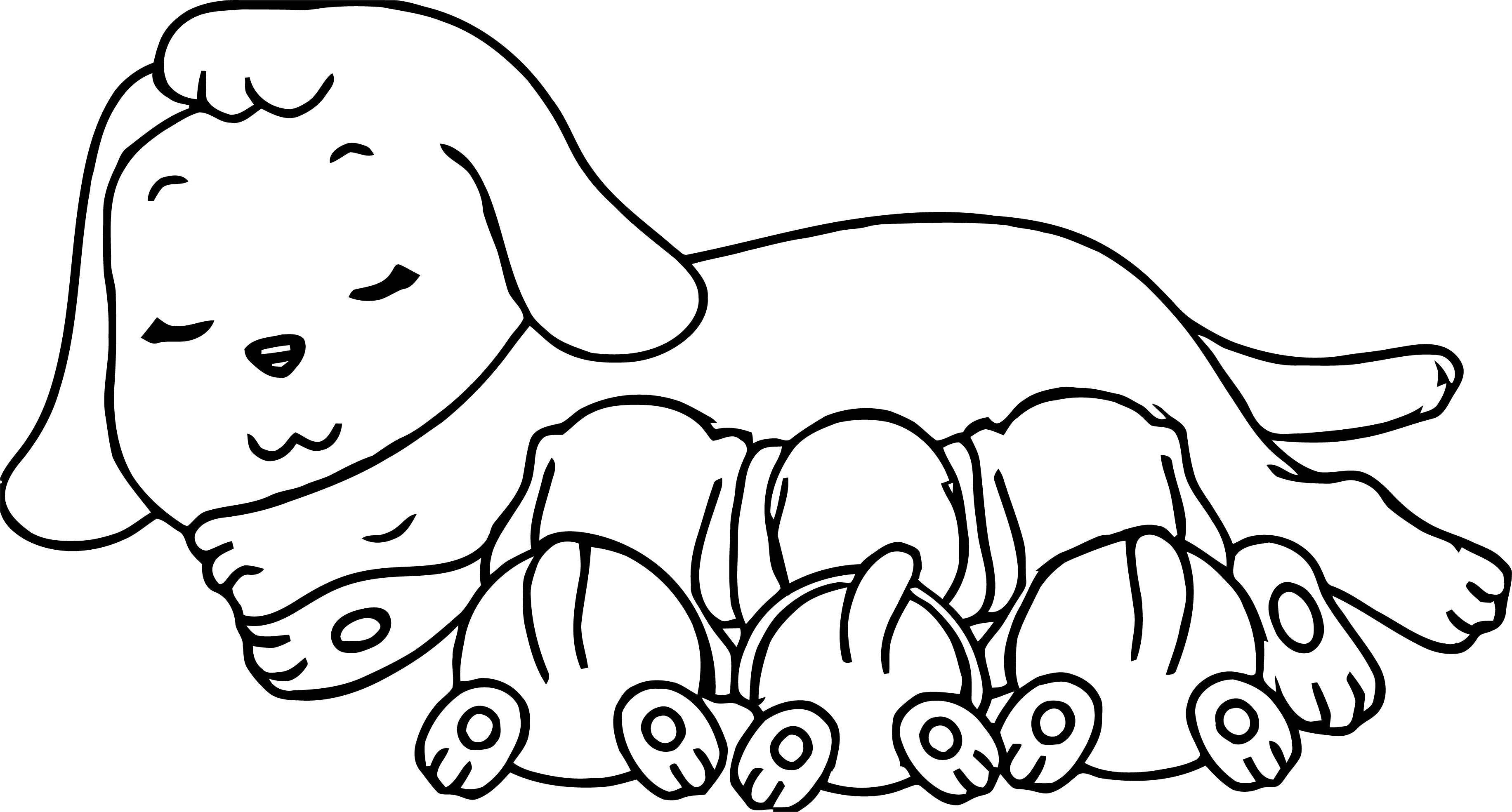 Sleeping Momy Puppy Dog And Childs Milk Coloring Page