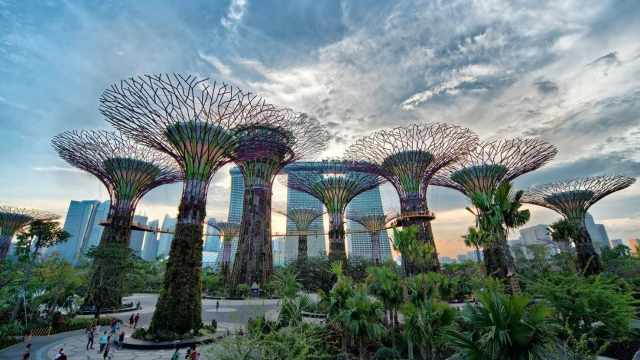 visit Singapore for honeymoon