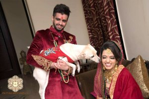 incorporate pets in your wedding