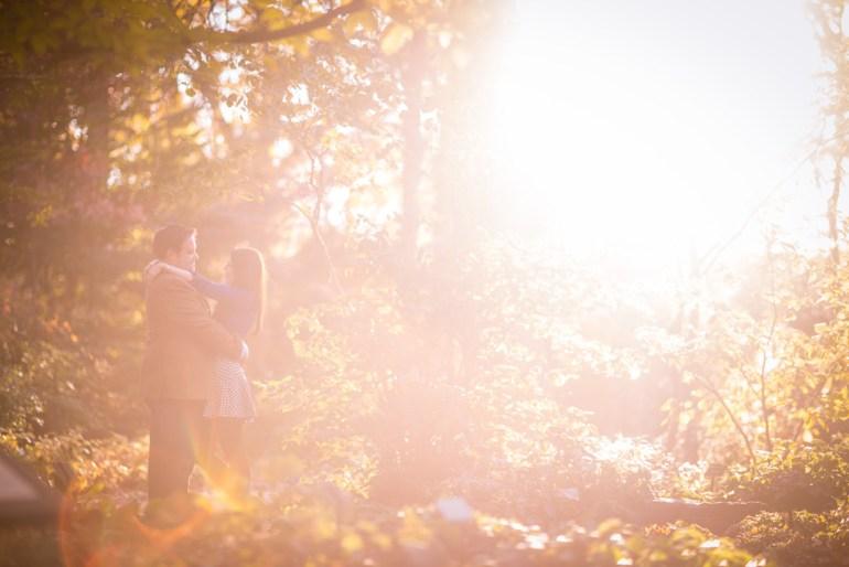 -Saint-Louis-Wedding-Engagement-Photographer-Missouri Botanical Garden-0011