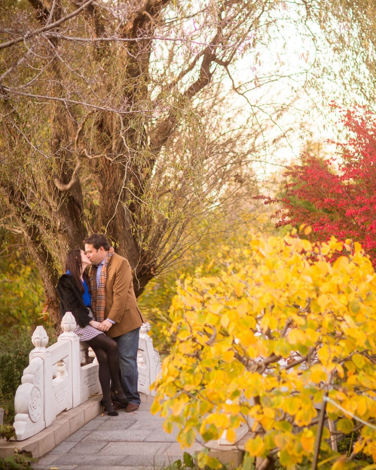 -Saint-Louis-Wedding-Engagement-Photographer-Missouri Botanical Garden-0015