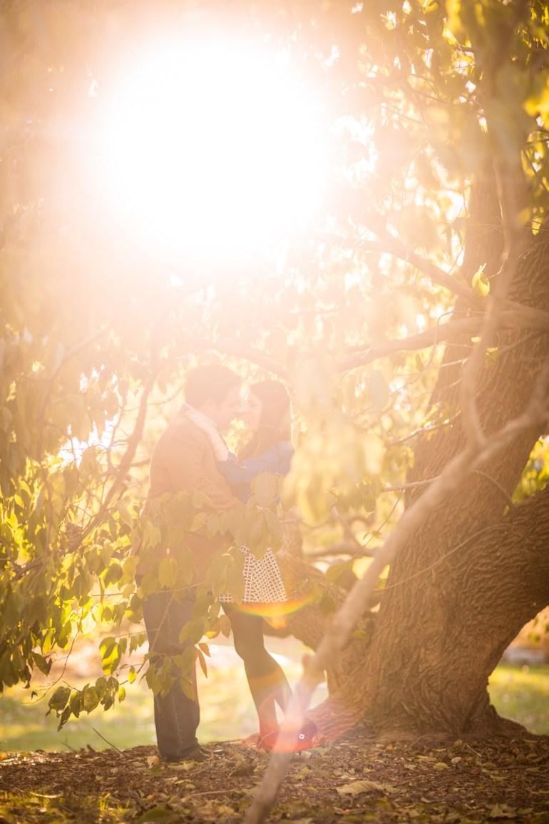 -Saint-Louis-Wedding-Engagement-Photographer-Missouri Botanical Garden-0020