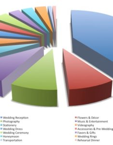 Wedding budget breakdown is of your going to reception venue also pie chart on onewed rh