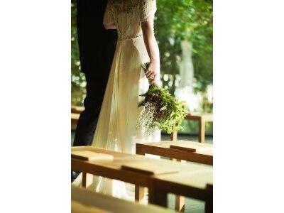 【平日限定】ドレス無料!森のチャペル×美食体験付欲張りフェア