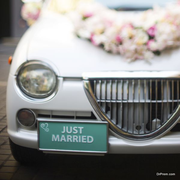 Just married wedding sign for car or decoration