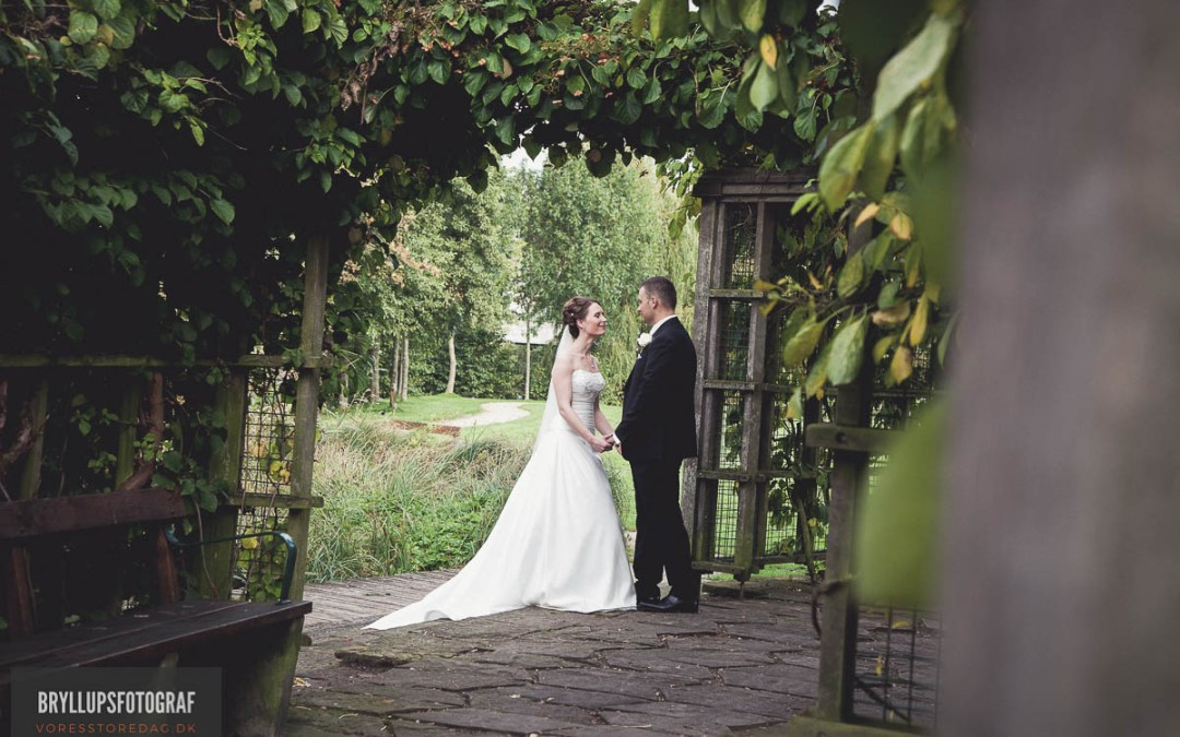 Basic Guide On How To Plan For A Wedding