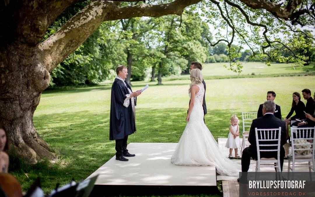 Wedding Planning Careers Article