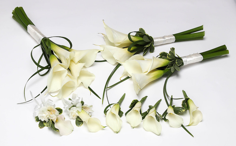 ALWAYS ELEGANT CALLA LILY PACKAGE