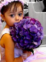 pretty flower girl hairdo