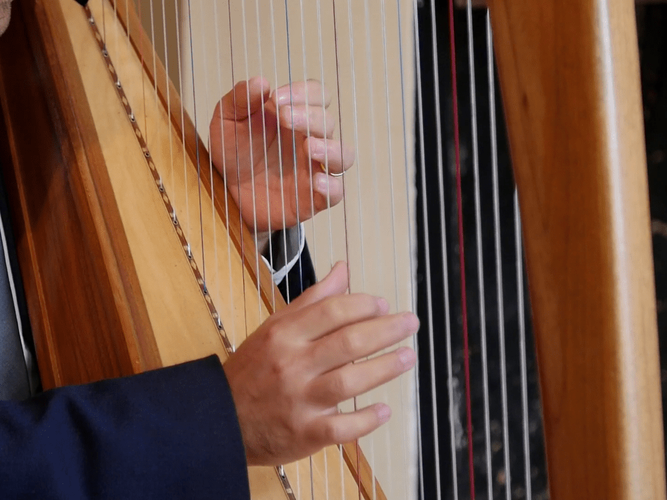 Wedding harpist Mark Levin fingers playing the harp