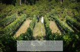 Tuscany_villa_wedding_013