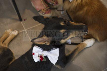seaside-wedding-friuli-01