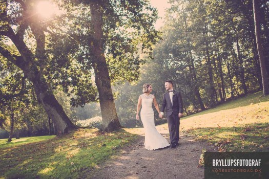 What Questions To Ask a Photographer For a Wedding Photo Shoot?