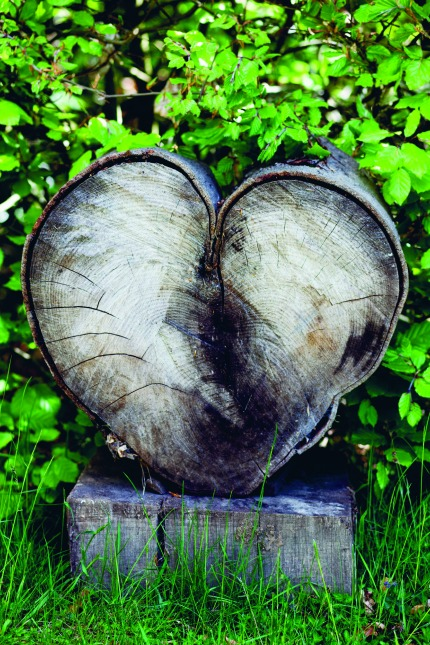 Living Life Beautifully by Christina Strutt  Heart-Shaped Tree Stump