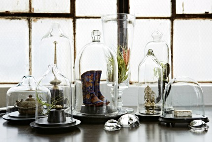 The Stuff of Life by Hilary Robertson Glass Domes