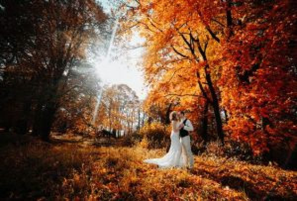 beautiful couple walking in the autumn lawn