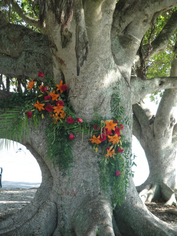 Wedding Flowers on Banyan Tree at City Island Sarasota Wedding Ceremony
