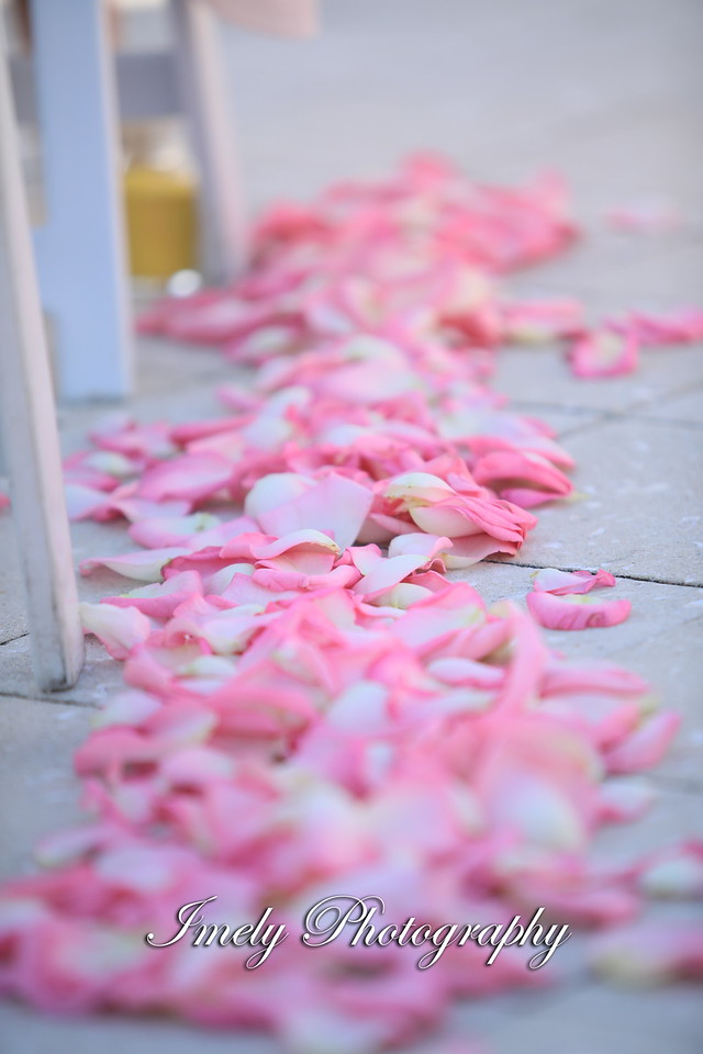 Pink Rose Petals Down Aisle
