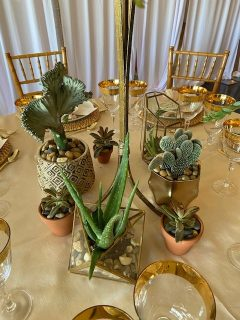 Close-up of Base of Desert BoHo Wedding Centerpiece with Cactus